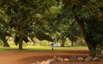 סועד משפחות 28.4 – חניון ירוק