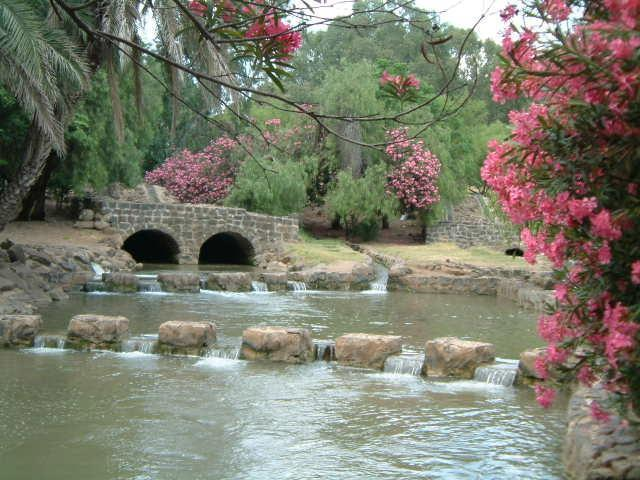 סועד משפחות 13.4 – פארק הירדן